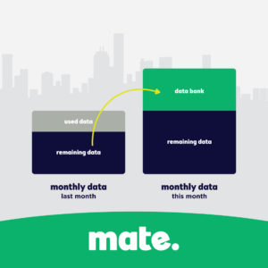 MATE Mobile Data Banking